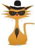 凉快的猫 免版税库存照片