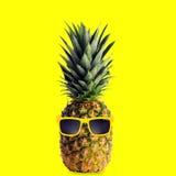凉快的菠萝 库存照片