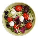 凉拌生菜用无盐干酪和西红柿 库存照片