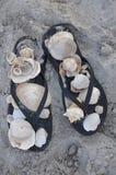 凉鞋和壳 图库摄影