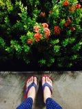 凉鞋在庭院里 库存照片