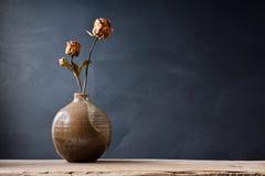 凋枯在花瓶上升了 库存图片