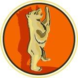 减速火箭北美灰熊常设的圈子 库存例证