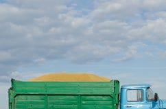 减速火箭的卡车卡车汽车收获麦子谷物谷物 图库摄影