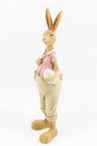 减速火箭的复活节男性兔宝宝 库存照片
