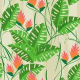 减速火箭的无缝的热带花叶子样式背景 免版税库存照片