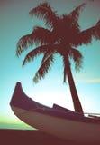 减速火箭的样式独木舟和棕榈树 库存照片