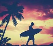 减速火箭的棕榈树和冲浪者 库存照片