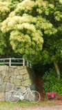 减速火箭的白色自行车,篮子桃红色花,绿色树在公园 库存照片