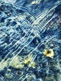 减速火箭的秋天水背景 库存照片