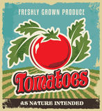 减速火箭的蕃茄葡萄酒广告海报标签-金属化标志并且标记设计 免版税库存图片