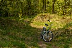 紧凑自行车在一块晴朗的森林沼地站立 免版税库存图片