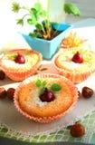 凝乳杯形蛋糕用鹅莓 免版税库存照片