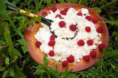 凝乳自创莓 库存图片