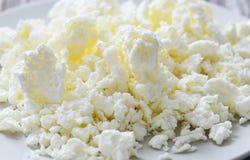凝乳酪 免版税库存图片