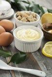 凝乳 柠檬奶油 免版税库存图片