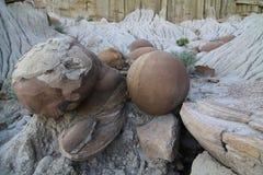 凝固物,西奥多・罗斯福国家公园,北达科他 免版税库存照片