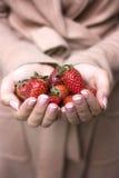 几个成熟草莓 库存照片