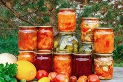 几个自创瓶子罐装菜和新鲜蔬菜在一张木桌-图象上 免版税图库摄影