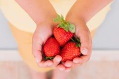 几个草莓在手上 库存图片