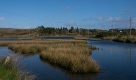 几乎一点湖从Mizen头, 免版税库存照片