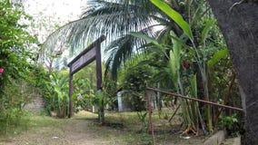 几乎被忘记位于一种树木丛生的储备的Yamashita寺庙的小范围 影视素材