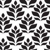几何模式无缝的向量 现代花卉,叶子纹理 向量例证
