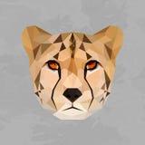 几何色的猎豹头 免版税图库摄影