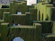 几何裁减树篱在阿尔罕布拉的庭院里 库存照片