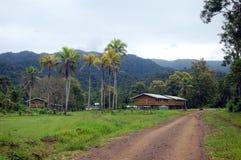几内亚新的巴布亚村庄 库存照片