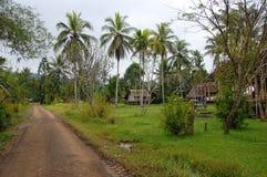 几内亚新的巴布亚村庄 免版税库存照片