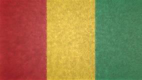 几内亚的旗子的原始的3D图象 库存例证
