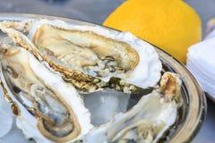 几只开放牡蛎在有冰和柠檬的一个碗在 图库摄影