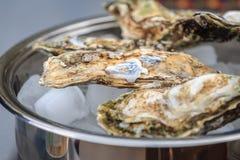 几只闭合的牡蛎在有冰的一个平底锅在 免版税库存照片