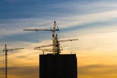 几台起重机抬头修建多层的居民住房的黄色结束在日落 库存照片