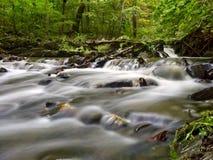 几瀑布小瀑布通过豪华的森林 免版税库存图片