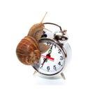 几点现在是它? 免版税库存照片