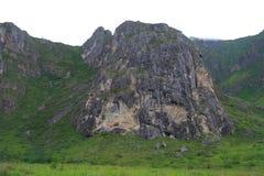 几百年的山脉,用绿叶盖的岩石 免版税库存图片