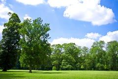 凡尔赛公园 库存照片