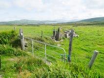凯利,爱尔兰圆环  免版税图库摄影