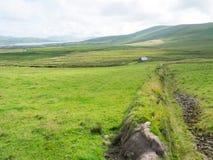 凯利,爱尔兰圆环  免版税库存图片