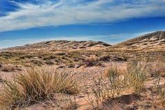 在莫哈韦沙漠国家历史文物的凯尔索沙丘 免版税图库摄影
