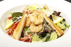 凯撒干酪包括油煎方型小面包片穿戴的叶子巴马干酪长叶莴苣沙拉海鲜 包括长叶莴苣沙拉 库存图片