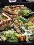 凯撒鸡烤沙拉 库存图片