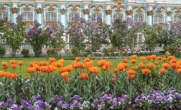 24凯瑟琳中心系列前面的皇家km贵族公园彼得斯堡住宅俄国selo南st tsarskoye访问 库存图片