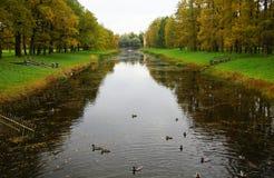 凯瑟琳公园在Tsarskoe Selo 库存照片