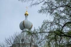 凯瑟琳宫殿被镀金的圆顶  免版税图库摄影