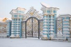 凯瑟琳宫殿门在Tsarskoye Selo在冬天 免版税库存照片