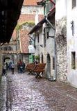 凯瑟琳段落-一个小的走道在2012年6月17日的老城市在塔林,爱沙尼亚 图库摄影