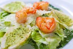 凯萨色拉用海鲜和油煎方型小面包片穿戴用帕尔马干酪 库存照片